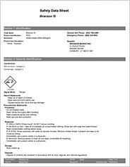 Branson-Industrial-Strengh_SDS-PDF-thumb